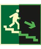 Направление к эвакуационному выходу по лестнице вниз (правосторонний) (Фотолюминесцентный Пленка 200 x 200)